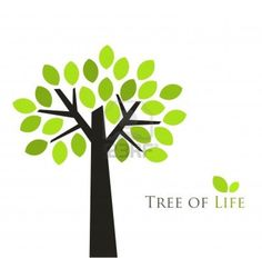 Tree of life. Vector illustration Stock Photo