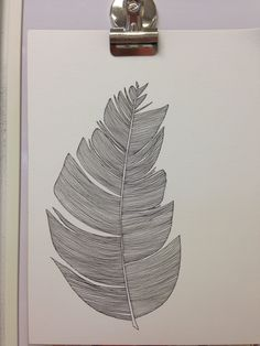 #feather original illustration
