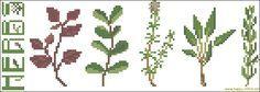 Culinary herbs cross stitch pattern