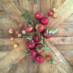 highway apples
