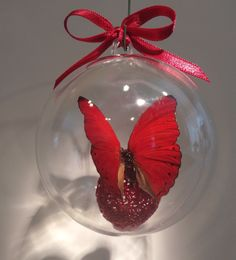 """Cymotoe sangrias""  from  Nigeria        The blood red cymothoe  80 mm clear ornament $20.00 US Butterfly Ornaments, Clear Ornaments, Sangria, Christmas Bulbs, Blood, Holiday Decor, Red, Crafts, Manualidades"