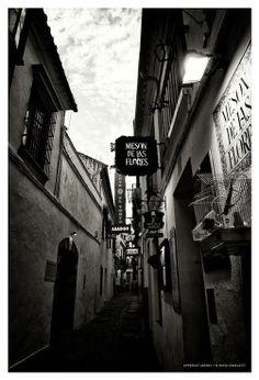 DAVID ANGELETTI PHOTOGRAPHIES   CORDOBA #spain #street #light #blackwhite