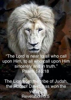 Lion of judah, the lord is near to all who call upon him Scripture Verses, Bible Verses Quotes, Bible Scriptures, Lion Bible Verse, Bible Prayers, Biblical Quotes, Christian Life, Christian Quotes, Intj