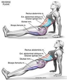 This One Exercise Proven To Burn Back Fat, Tighten Your Core And Improve Posture
