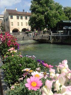 Primavera en Treviso. Una de las más lindas que he vivido.-