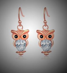 Shipping: FREE to Worldwide Satisfaction: 45 Days Money Back Guarantee Safe for you: SSL Encripted Checkout Owl Earrings, Owl Jewelry, Elegant Woman, Great Gifts, Fashion Accessories, Brooch, Free Shipping, Store, Crafts