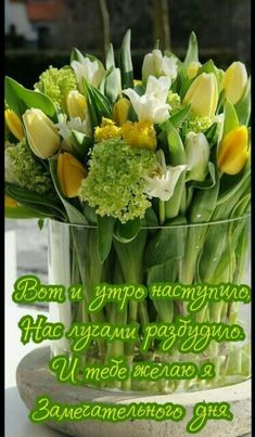 Фотография Spring Air, Floral Arrangements, Good Morning, Beautiful Flowers, Happy Birthday, Herbs, Pictures, Lyrics, Paisajes
