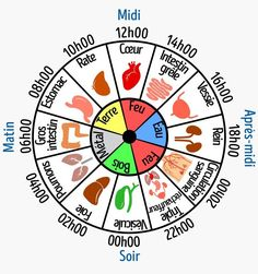 Why are you waking up at the same time every night? Chinese medicine … - All About Health Reiki, Le Mal A Dit, I Ching, Burn Out, Acupuncture Points, Traditional Chinese Medicine, Spiritual Health, Qigong, Yin Yoga
