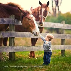 I hope I can do this shot with Avery at the farm sometime!!