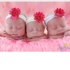 Triplets. How adorable.