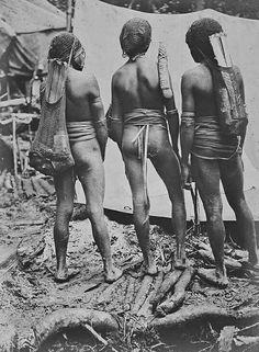 Derde Nederlandse expeditie naar Nieuw-Guinea, augustus 1912 tot mei 1913