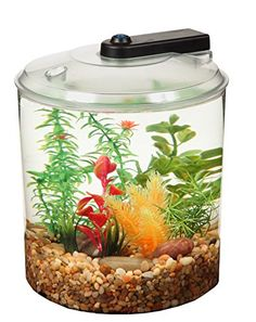 API Betta Kit 360 Degree Fish Tank, 1.5 gallon *** Be sure to check out this awesome product.