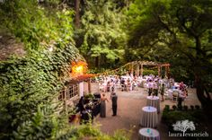 outdoor wedding photography | Leach Botanical Gardens, Portland, Oregon | Laura Evancich photography