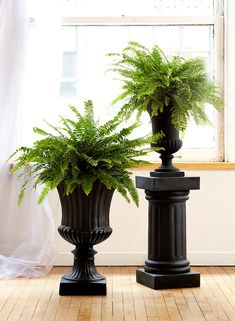 This large, black fiberglass urn has a smooth body, with a ribbed pattern at the bottom of its bowl and a classic motif at its curved top edge. Make it part of a classic garden design with our other matching urns, or use it for a large floral arrang Urn Planters, Decorative Planters, Black Planters, Decorative Items, Large Flower Arrangements, Large Flowers, Interior Design Vignette, Church Foyer, Garden Urns