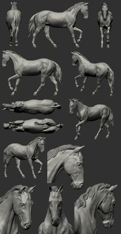 I improved the front bent knee on Steve's advice - added the bony bulge at the back. Horse Anatomy, Anatomy Poses, Animal Anatomy, Horse Sculpture, Animal Sculptures, Horse Drawings, Animal Drawings, Digital Sculpting, Anatomy For Artists