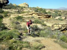 The Zen Trail St George Utah