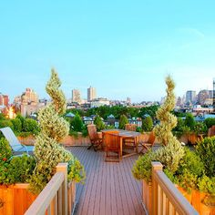Brownstone Rooftop Patio Skyline Design, Pictures, Remodel, Decor and Ideas