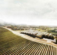 Bodega Rothschild & Vega-Sicilia, Samaniego | Emilio Tuñón Arquitectos
