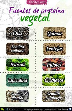 Fuentes de proteínas  vegetal.