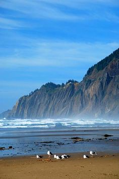 Manzanita, Oregon. Can't wait to go back!