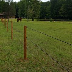 The Shockline Flex Fence® electric coated wire is a versatile horse fencing solution for high-traffic areas with a polymer coating to increase visibility. Shockline is sold in rolls. Log Fence, Pasture Fencing, Horse Fencing, Horse Paddock, Horse Barns, Electric Fencing For Horses, Fences Alternative, Field Fence, Horse Ring