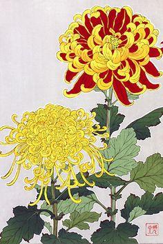 Chrysanthemum 河原崎奨堂 『菊』-木版画