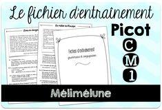 fichier Picot CM1