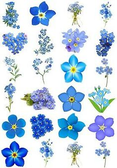 Tiny Flower Tattoos, Small Tattoos, Forget Me Not Tattoo, Tiny Flowers, Forget Me Nots Flowers, Beautiful Tattoos, Sticker Paper, Watercolor Flowers, Flower Art