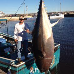 My baby caught a blue fin tuna! Tuna Fishing, Sport Fishing, Big Fish, Big Game, Tanks, Salt, Water, Blue, Animals
