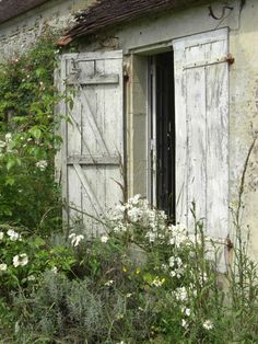 gardens, wildflowers of a dreamy french chateau