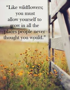 """""""Like wildflowers; you must allow yourself to grow in all the places people never thought you would."""" {Inspirational quotes}"""