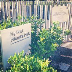 Taking a stroll down to Best Friend's Park at @klydewarrenpark