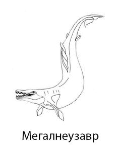 ornithomimus diagram 959x1024