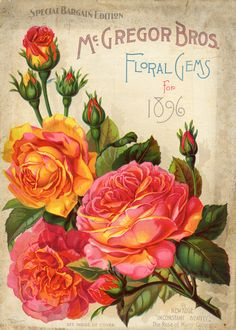 McGregor Bros. Floral Gems for 1896 ~ free for educational or personal use only.