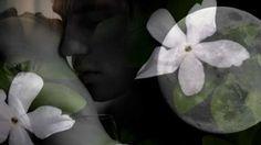Θα μείνουμε μαζί ως τα βαθειά γεράματα; (music video) | synoro news