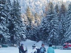 Ski for Fun & Freedom @Poiana Brasov, Romania