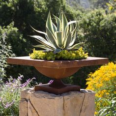 18 Best Modern Garden Design for Small Spaces in 2020 - Inspired by the Asian design's simplicity, modern garden design continues to rise in popularity for its streamline, sleek, sophisticated style. To ach. Courtyard Landscaping, Outdoor Landscaping, Outdoor Gardens, Landscaping Ideas, Garden Design Plans, Modern Garden Design, Landscape Design, Succulent Gardening, Succulents Garden