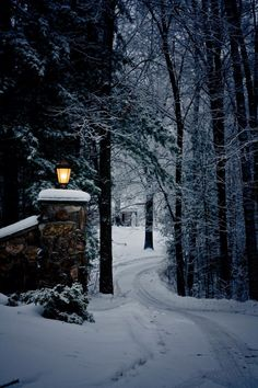 Opening to the ice bears land tucked away in a wintry wonderland and miles from civilization. Winter Love, Winter Snow, Winter Christmas, Winter Night, Prim Christmas, Christmas Scenes, Cozy Winter, Winter Schnee, Winter Magic