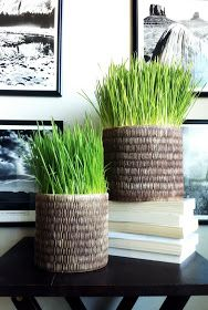 Bold Beautiful Brainy - A Life Well Lived: Project 2: The Grass is Still Greener (DIY for Busy Gals)