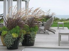I like the general idea but the tall plant that looks like cattails is too beachy for our house, I think