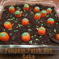 Pumpkin Patch Dirt Cake : a quick and fun Halloween / Spooky themed treat. Easy enough to get the kiddos involved! You'll just need Chocolate Pudding, Oreos, Pumpkin Candies and Sprinkles! www.cupcakesandsequins.wordpress.com