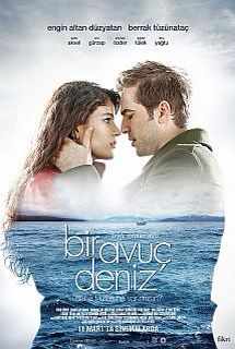 Turkish film