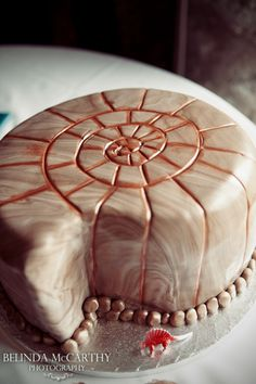 This would be a cute rehearsal wedding cake.. An ammonite fossil was the first gift David ever got me.