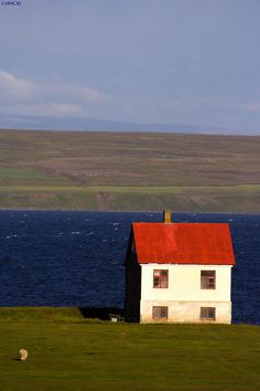Vestur-Hunavatnssysla - Iceland (von Corscri Daje Tutti!...