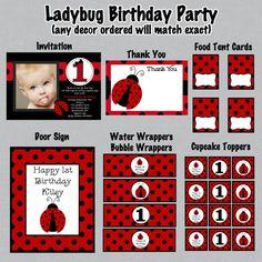 Ladybug 2nd birthday invitation wording font rsvp ladybug ladybug birthday invitations and party by cutiestiedyeboutique 4200 stopboris Gallery