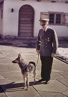 Hitler and Blondi at the Berghof.  Well-trained and affectionate, Blondi was loyal as only a dog can be.  It is so sad that such a sweet-natured animal was attached to such a monster. Hitler poisoned her just before he committed suicide in Berlin in 1945.