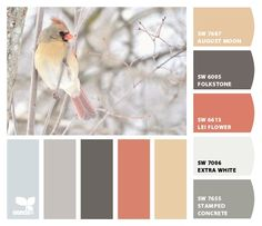 Chip It! by Sherwin-Williams...winter