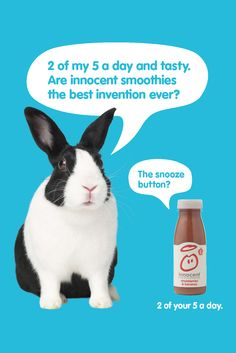 2010 Innocent Smoothies Print Ad with Rabbit. Ads Creative, Creative Advertising, Innocent Drinks, Best Inventions Ever, Brand Archetypes, Tv Adverts, Print Ads, Fun Projects, Smoothies