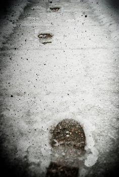 «I miei passi facevano scricchiolare il ghiaccio...» e Roberta Baria li ha fotografati per #ilpassatoèunabestiaferoce http://www.massimopolidoro.com/il_passato_e_una_bestia_feroce/