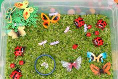 busy bins..   See more about this Bug Themed Sensory Bin.